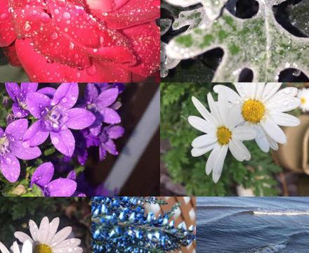 St mary magdalene academy sixth form islington photography competition 2019 ruby barrow